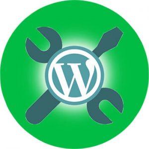 Servicios wordpress